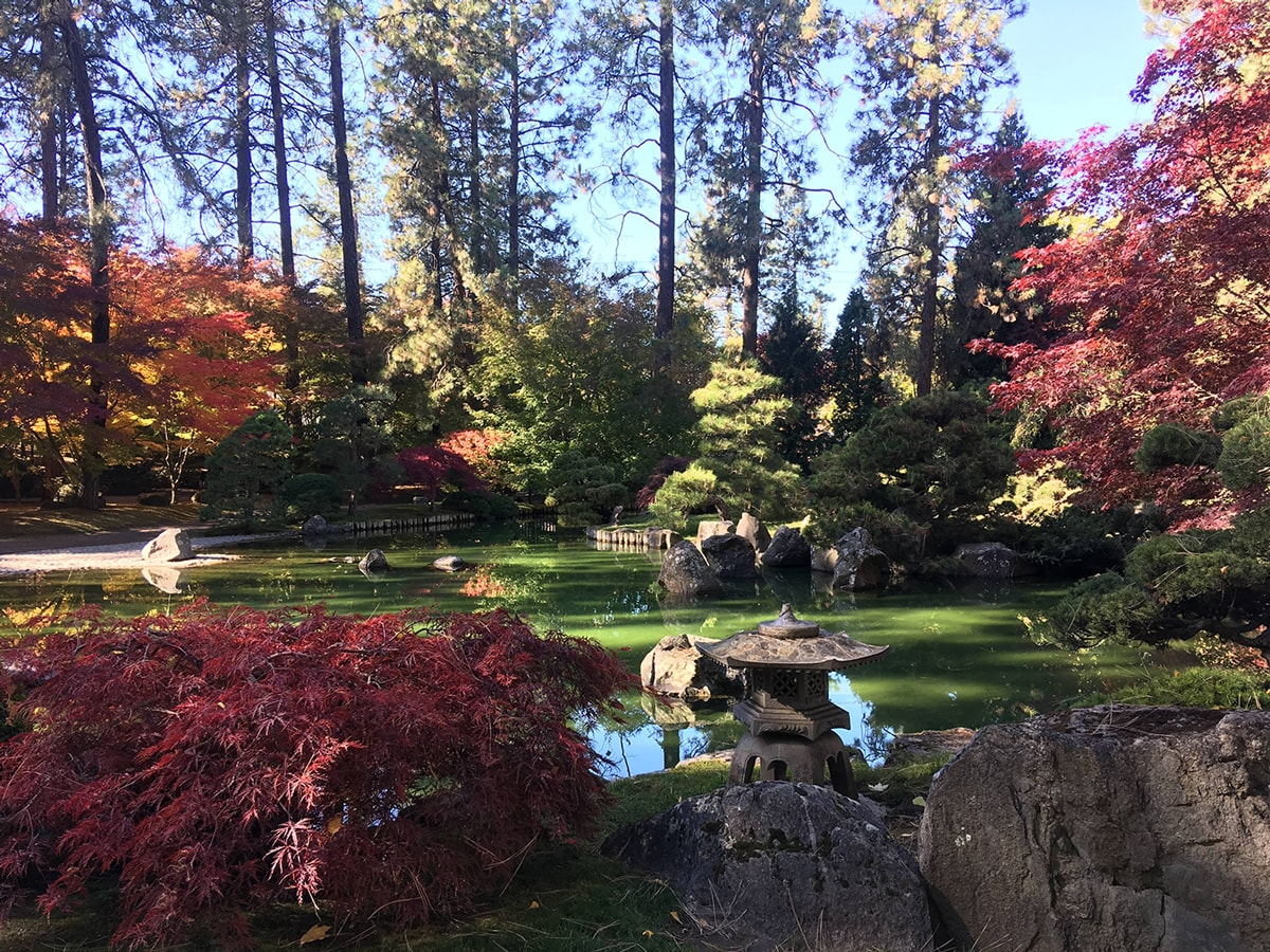 Japanese Gardens - Spokane